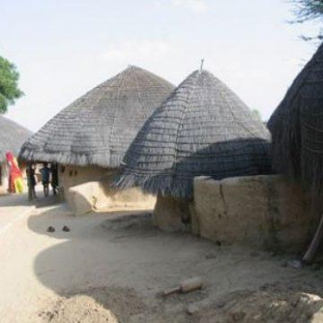 בניה מסורתית באדמה – להסתכל אחורה בכדי ללכת קדימה